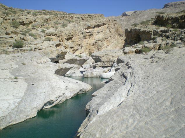 Wadi Oman Jan 2011 (9)